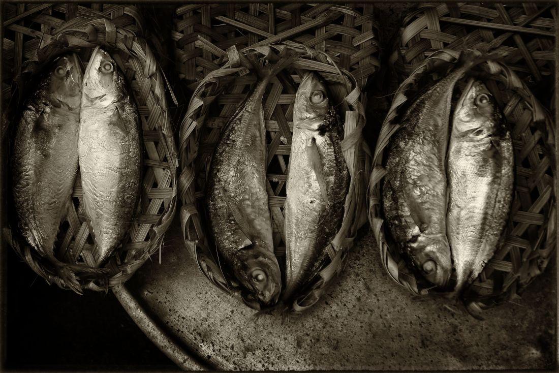 Saigon: Fresh fish from the delta© Roger Garwood 2013