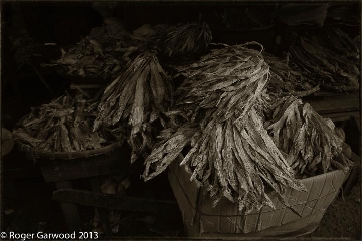 Mekong-Sepia-Resized-1120826